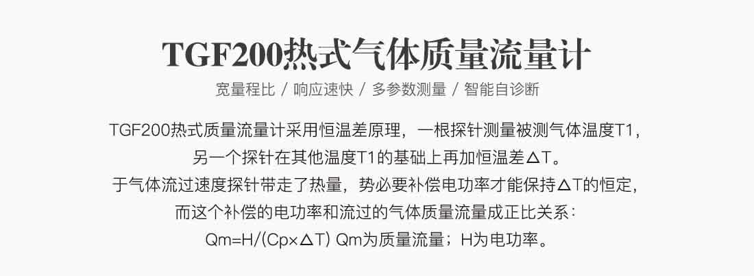 TGF200_02.jpg