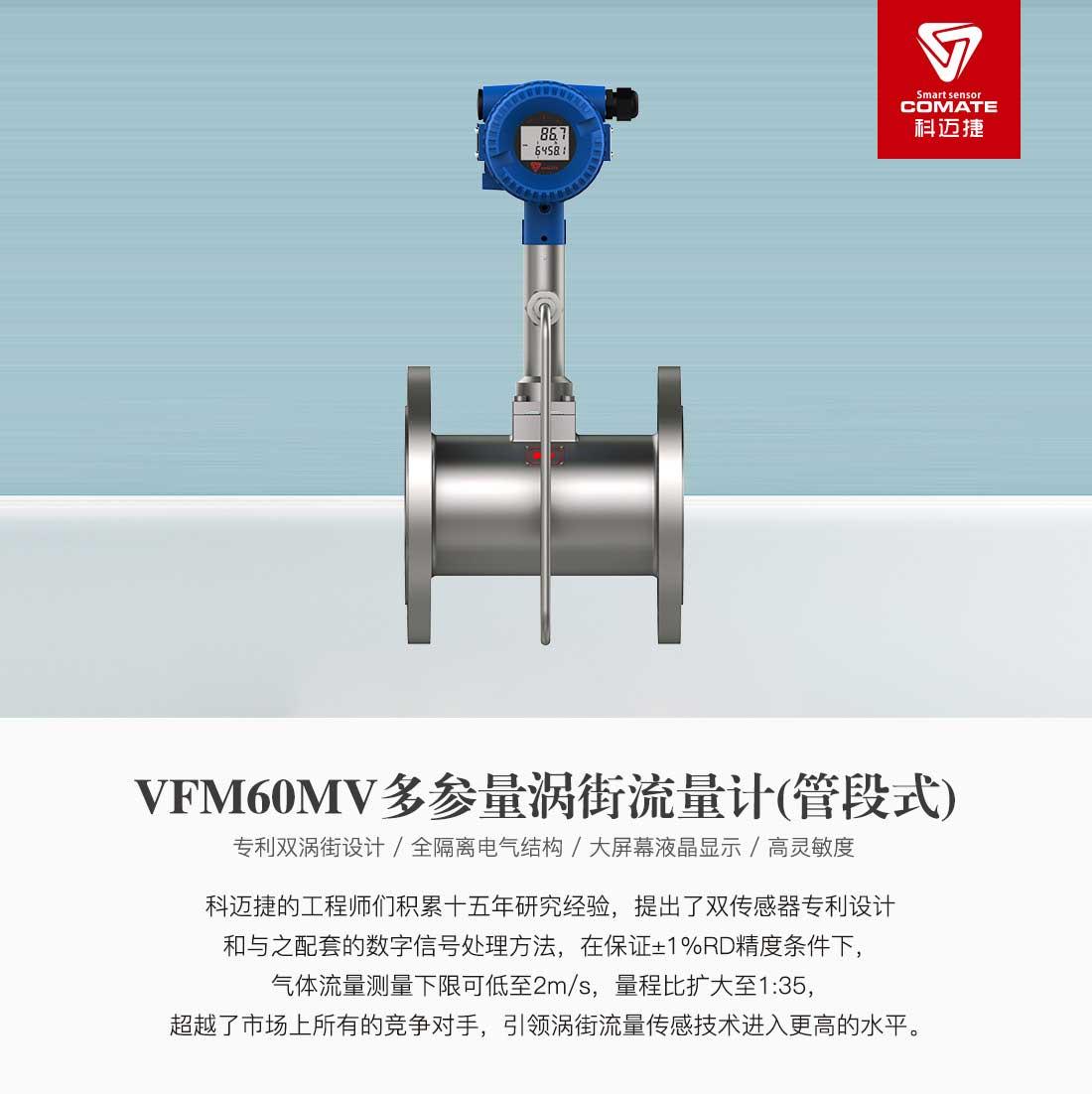 VFM60MV(管段式)_01.jpg