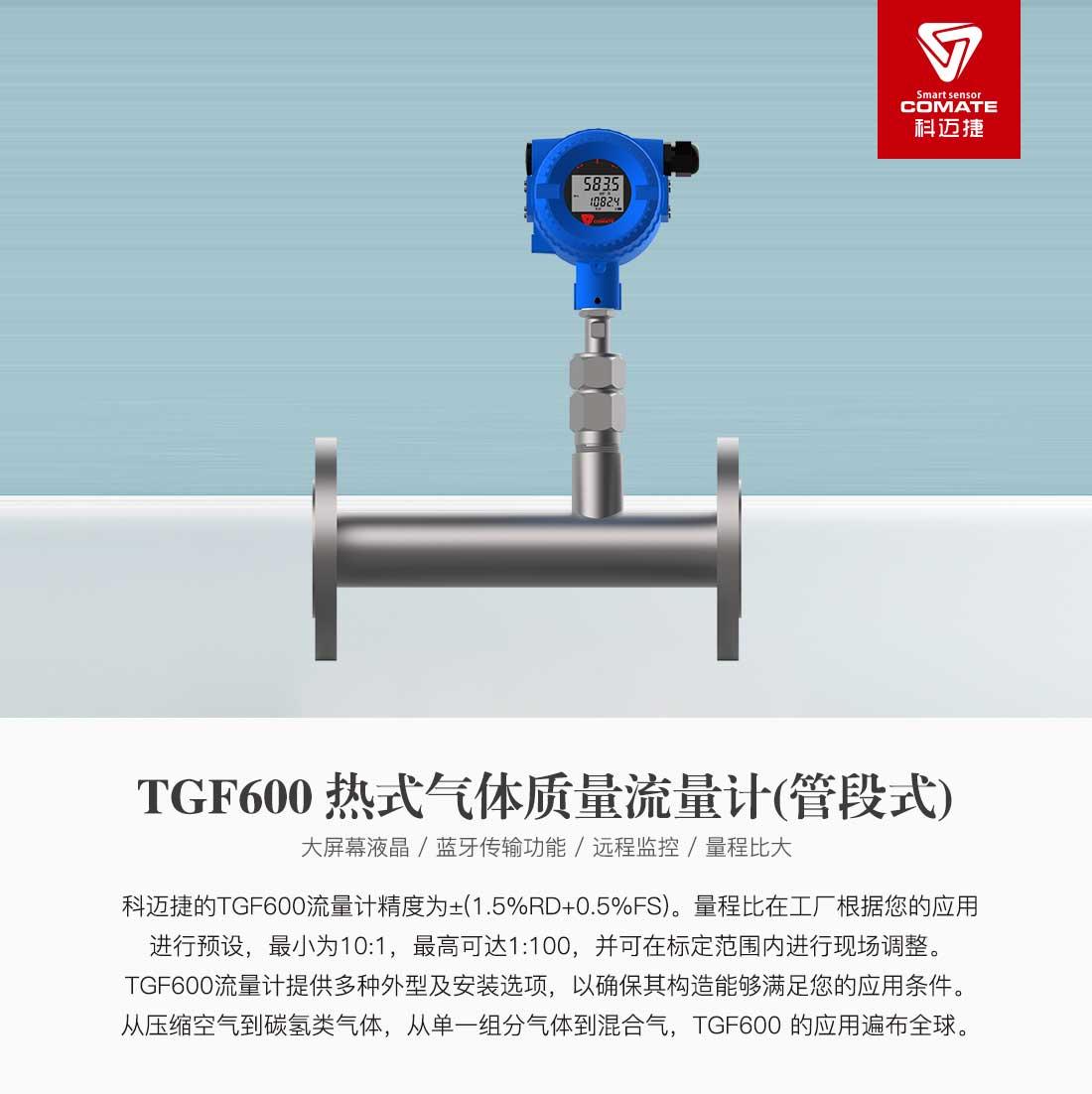 TGF600(管段式)_01.jpg